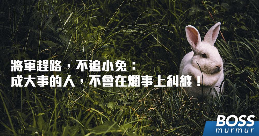 將軍趕路,不追小兔:成大事的人,不會在爛事上糾纏!